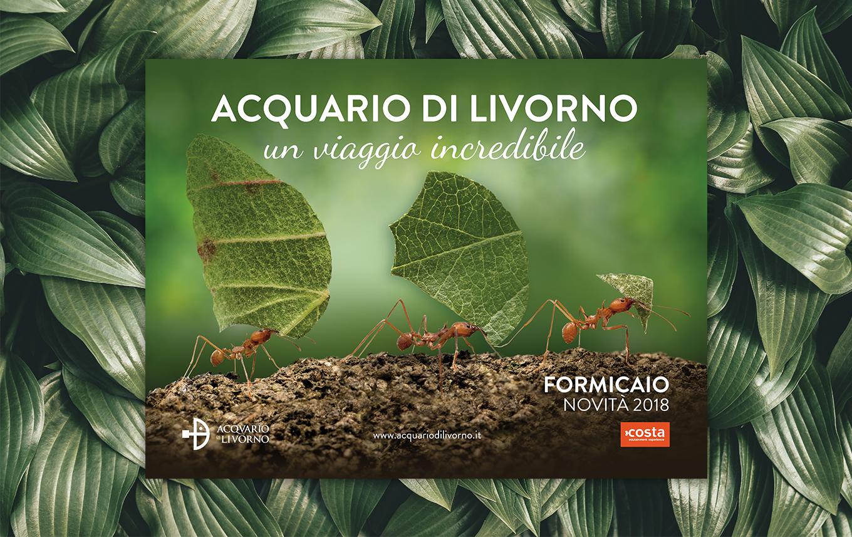 AquarioDiLivorno5